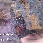 بازار سنگ آهن جهان تحت تاثیر ویروس کرونا